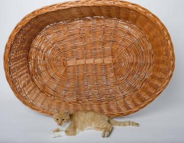 Leżak dla psa / kota z wikliny