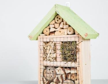 Drewniany domek dla insektów